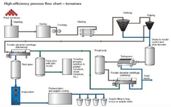 tomato processes rh mazmach tripod com Process Flow Chart Process Flow Diagram Template